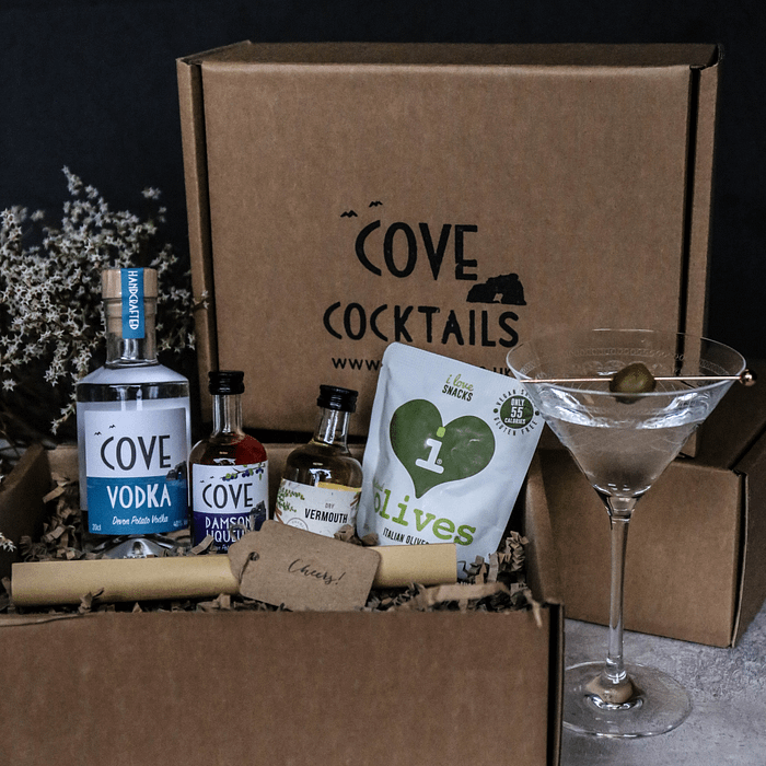 Martini Cocktail kit with damson liqueur and dry vermouth